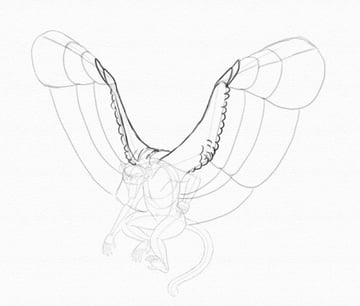 draw wings little feathers