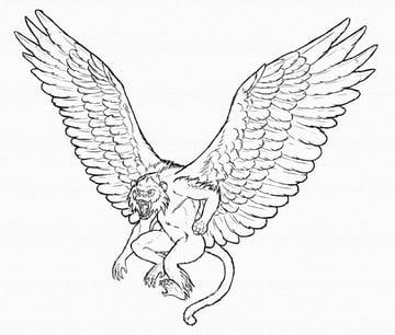draw winged monkey done