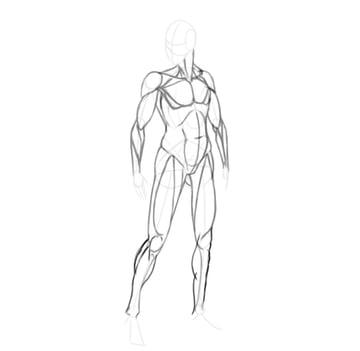 draw a realistic female warrior calves