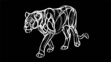 drawing lion inverse