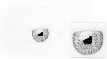 eye irsi shaded