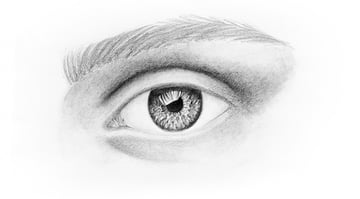 how to draw hairs in eyebrows