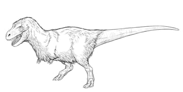 how to draw realistic trex