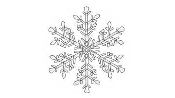 snowflake details