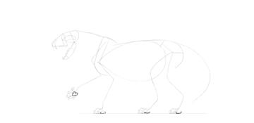 lion paw pads drawing