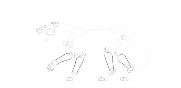 lion forearms drawing