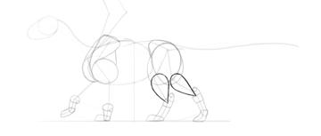 dragon calves