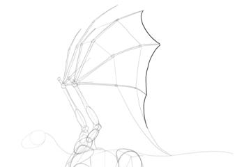 dragon wing membrane