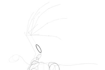 dragon wing forearm