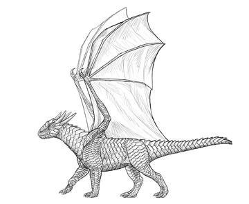 dragon shading scales