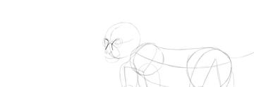 monkey drawing nose shape