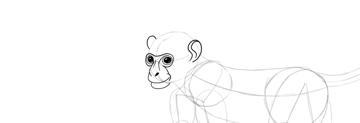monkey drawing ears done