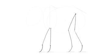 elephant leg joints