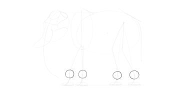 elephant wrists ankles shape