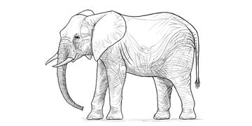 elephant simple shading