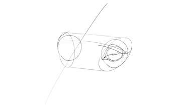 horse lower eyelid drawing
