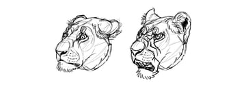 anthro furry animal emotions