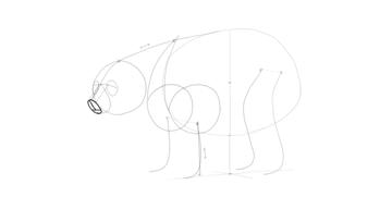 bear drawing 3d muzzle