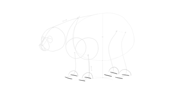 bear drawing paws flat on the ground