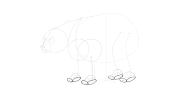 bear drawing paws sides
