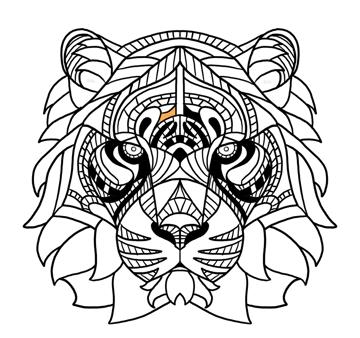 tiger pattern between eyebrows