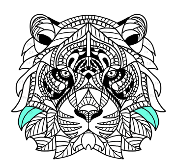 tiger face fur