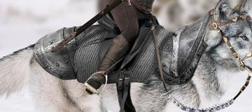 armor shaded