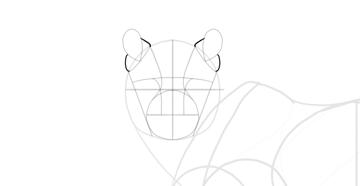 draw ear detail