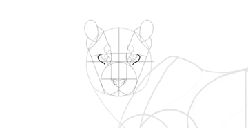 draw the eye detail