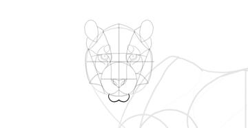 draw the chin