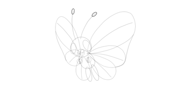 antennae tips butterfree