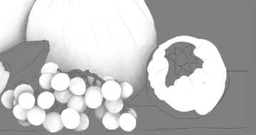 pomegranate in ambient occlusion