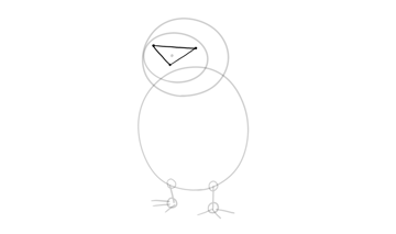 porg face proportions