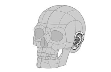 ear skull overlay