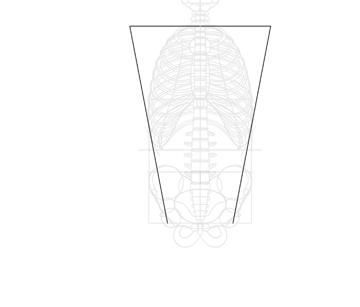 trapezoid measurement of shoulders