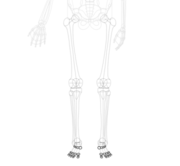 simplified foot joints