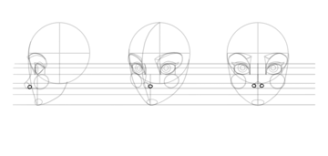 sketch the nostrils