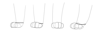 shape of cat paw