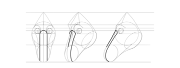 draw horse nasal bridge