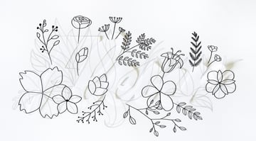 outline the flowers