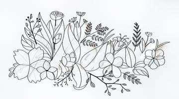 draw veins on leaves