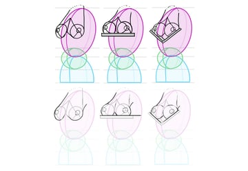 breasts correct shape