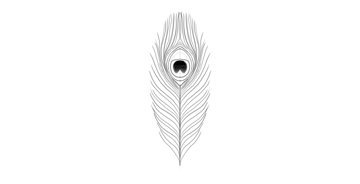 peacock feather lower part