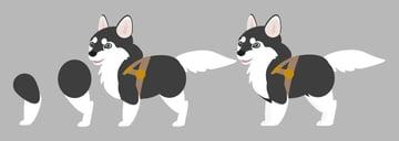 add husky legs vector