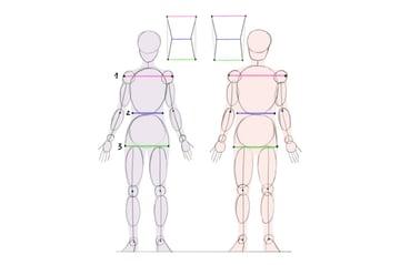 female male proportions comparison