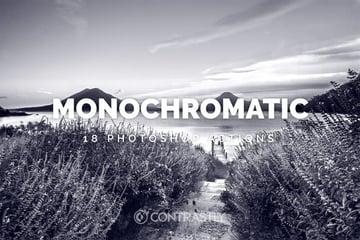 Monochromatic Photoshop Actions