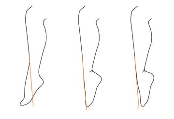 The line of the tibia