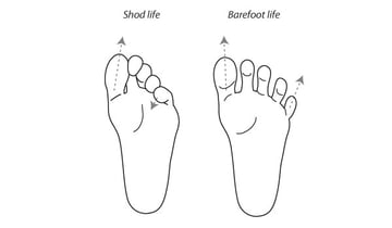 Shoes vs barefoot shapes