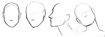 Study of Audrey Hepburns face contours