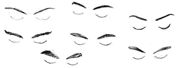 Study of eyebrows seen from above